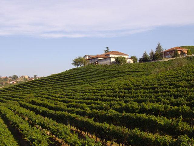 portoni industriali per azienda vitivinicola